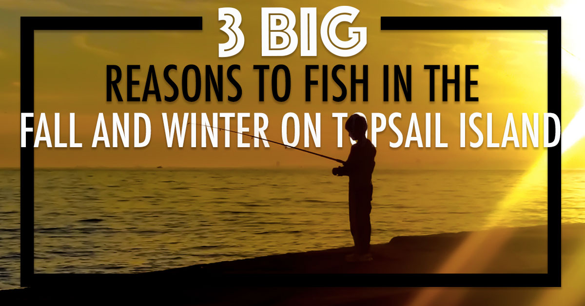 3 Big Reasons to Fish in the Fall and Winter on Topsail Island