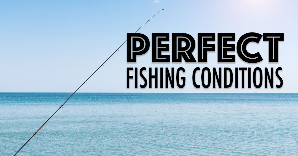 Perfect Fishing Conditions