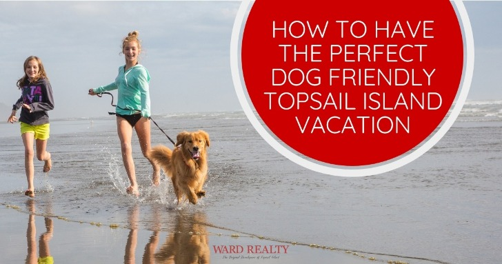 How to Have the Perfect Dog Friendly Topsail Island Vacation | Ward Realty
