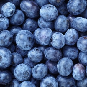 fresh blueberries | Ward Realty Topsail Island