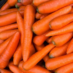 fresh carrots | Ward Realty Topsail Island