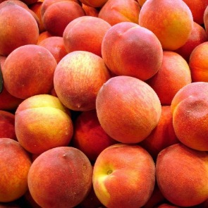 fresh peaches | Ward Realty Topsail Island