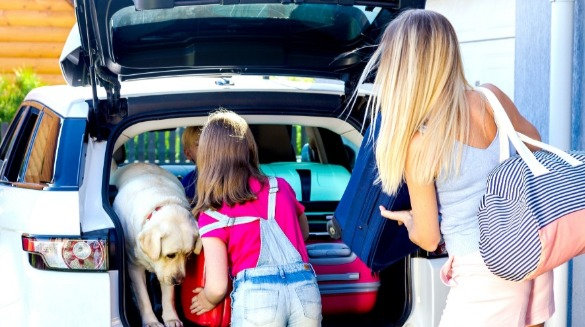 Packing car for family vacation with dog | Ward Realty